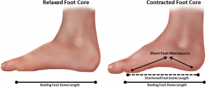 foot-core